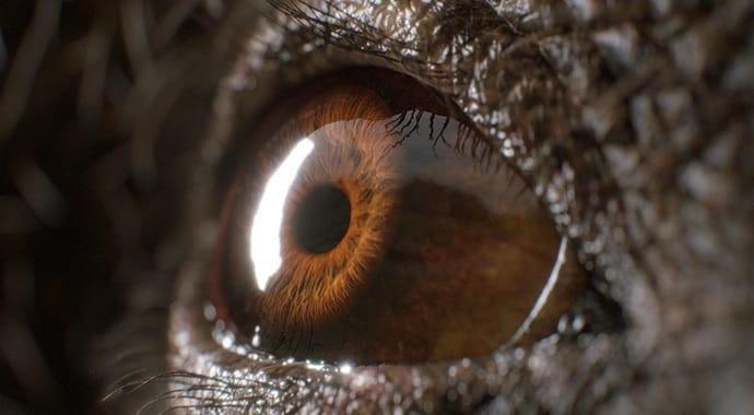 Yuki sugimaya eye art vray maya thumb