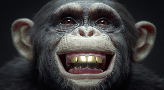 Nki winimax monkey vray