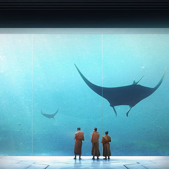 Thomas Dubois V-Ray Cinema 4d Art