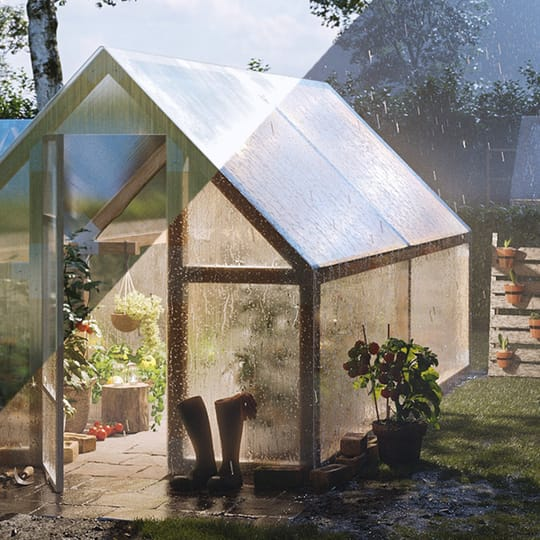 A sunny and stormy greenhouse scene